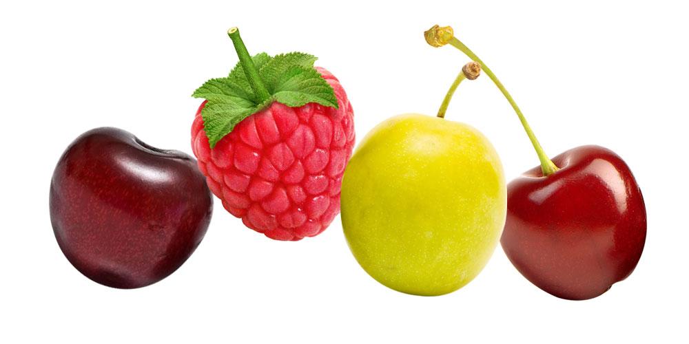 empresa-frutas-horizontal
