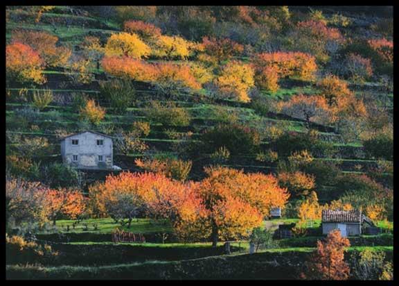 Fotografia Valle del Jerte