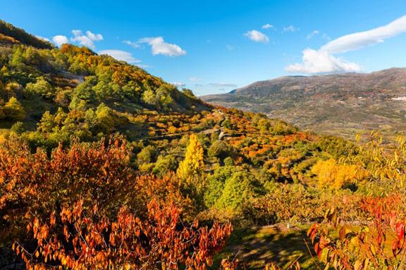 Otoñada Valle del Jerte 2013