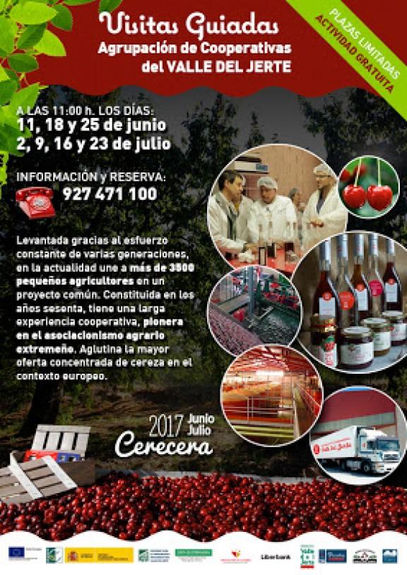 Visitas-guiadas-Agrupación-cooperativas-valle-del-jerte